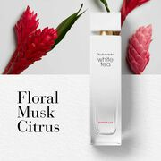 Key Notes-Floral, Musk, Citrus