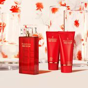 Red Door 3.3oz 3-Piece Set, , large