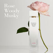 Olfactory: Rose, Woody, and Musky