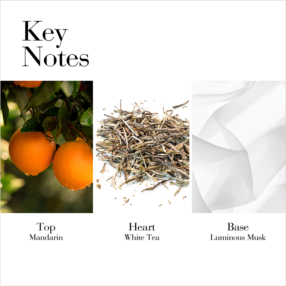 Key Notes- Top Mandarin, Middle White Tea, Base Luminous Musks