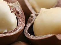 Jojoba and Macadamia Nut Oil