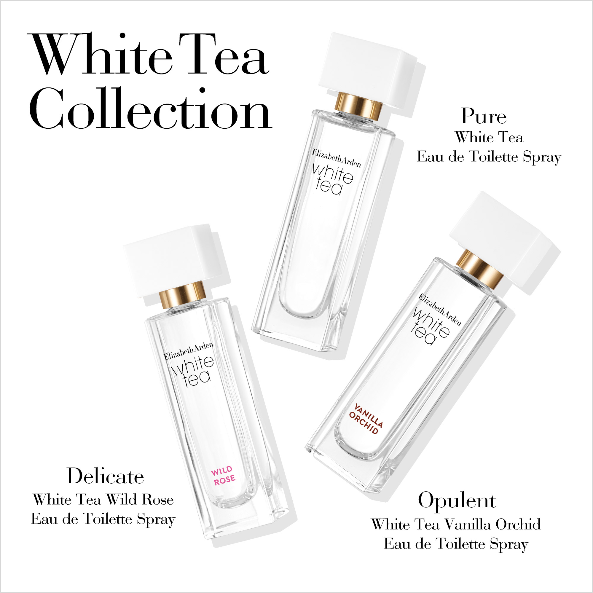White Tea Collection