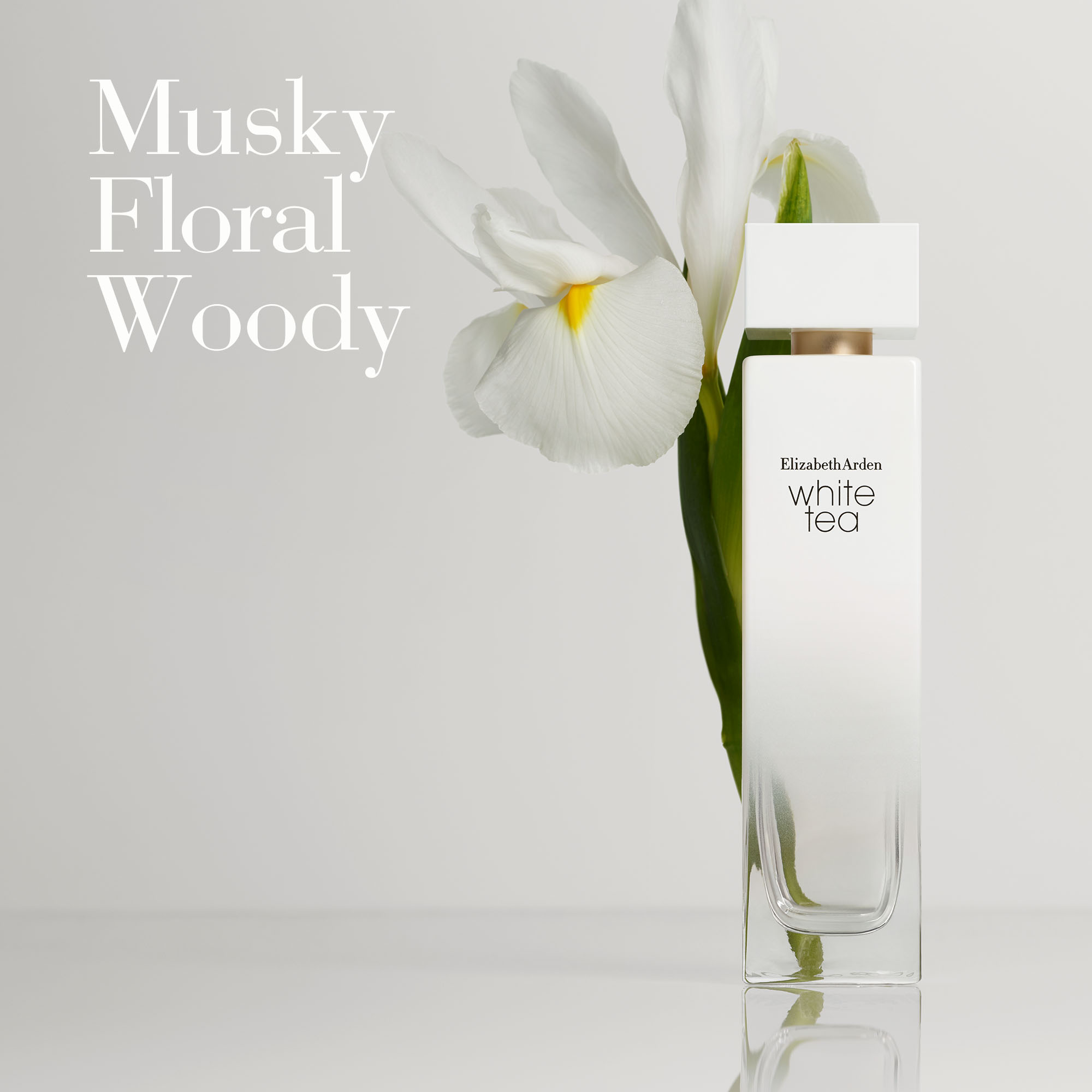 Olfactory: Musky, Floral and Woody